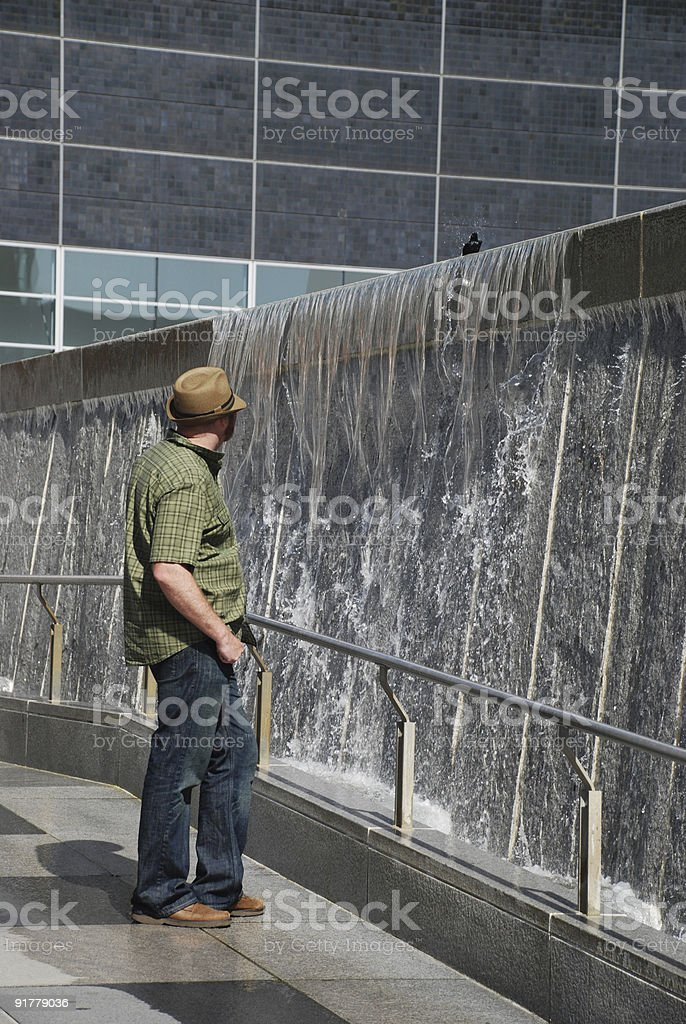 Man Watches Bird royalty-free stock photo
