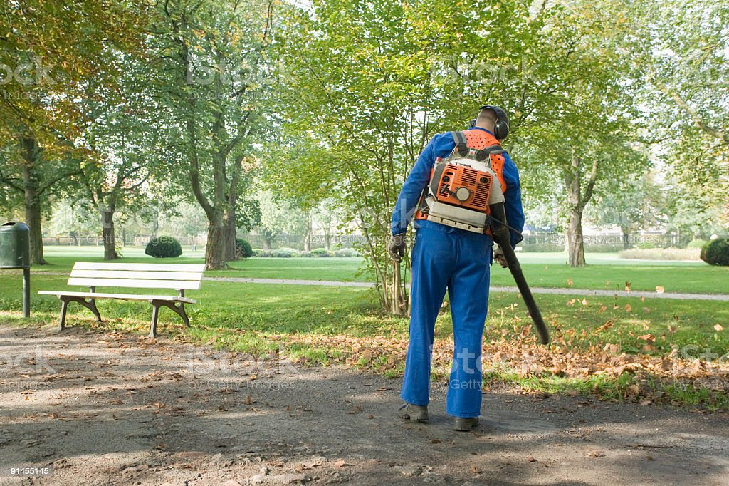 Man wearing blue coveralls removing leaves from footpath in park stock photo