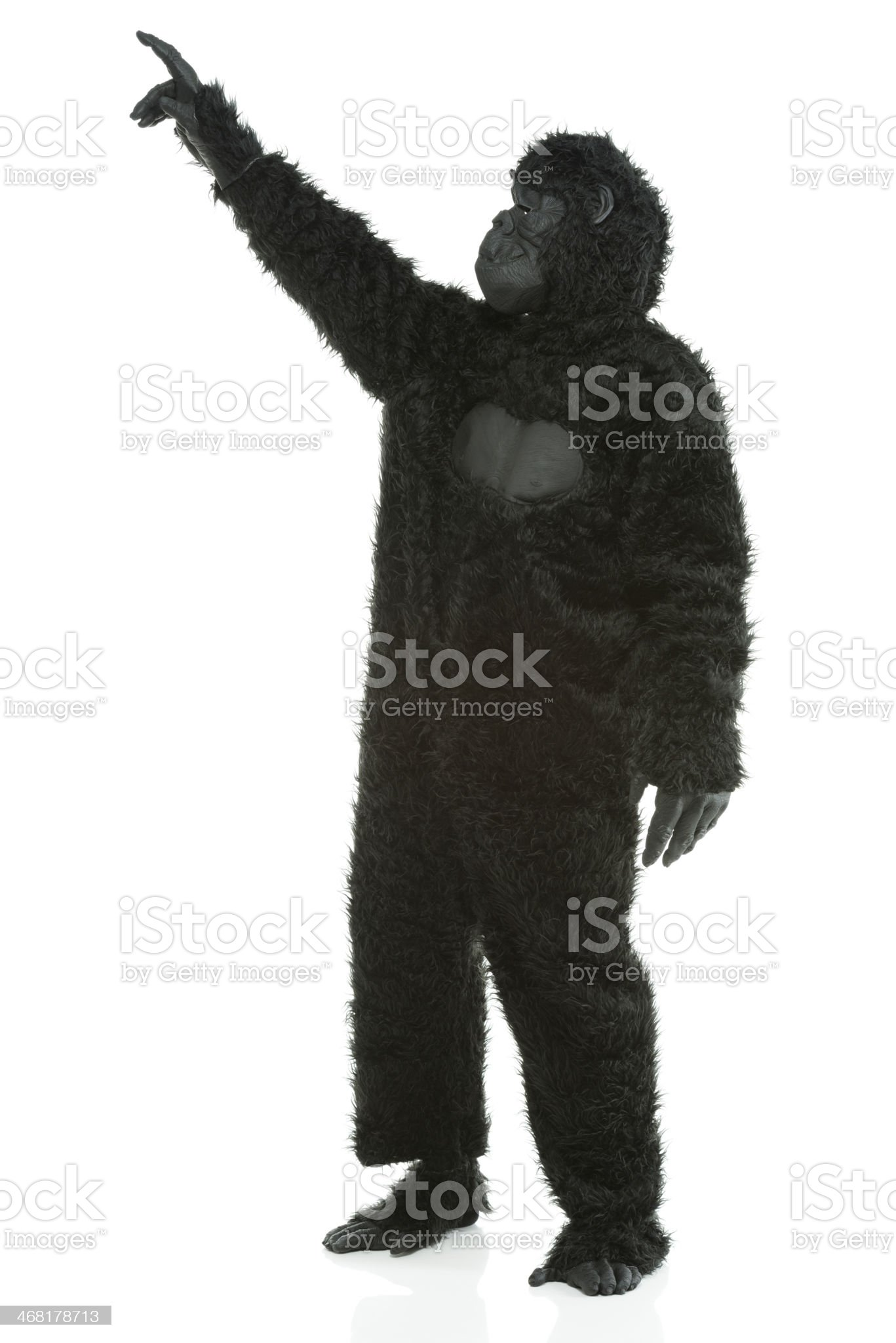 Man wearing Gorilla costume and pointing royalty-free stock photo