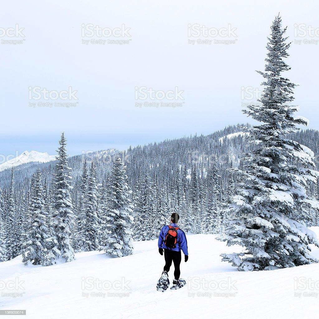 man winter hiking stock photo