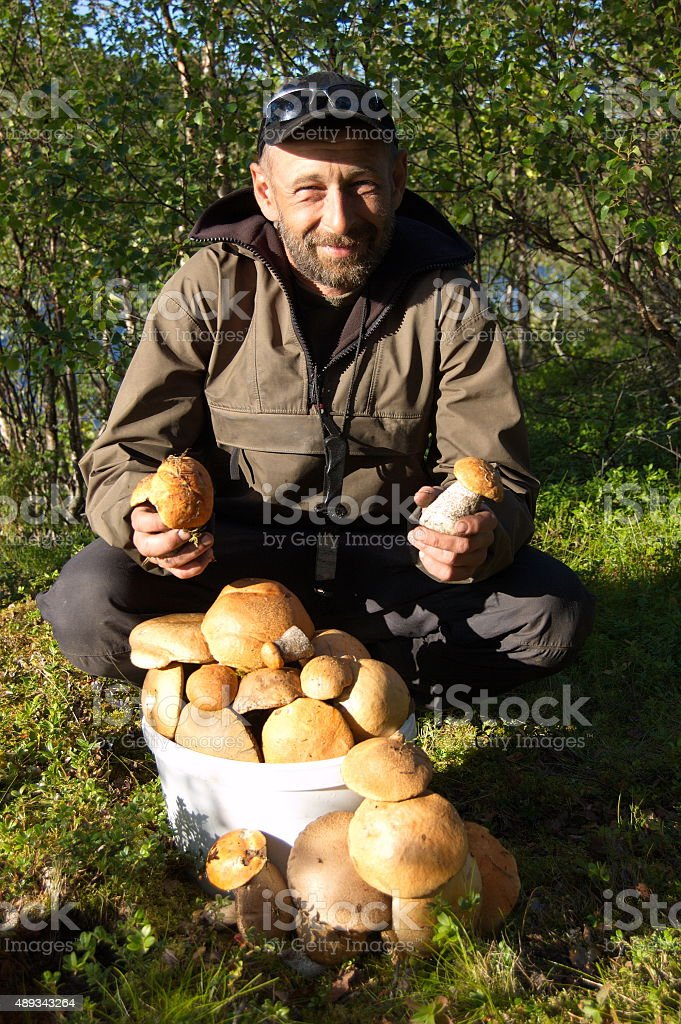 Man with a pail of aspen mushrooms in the forest. stock photo