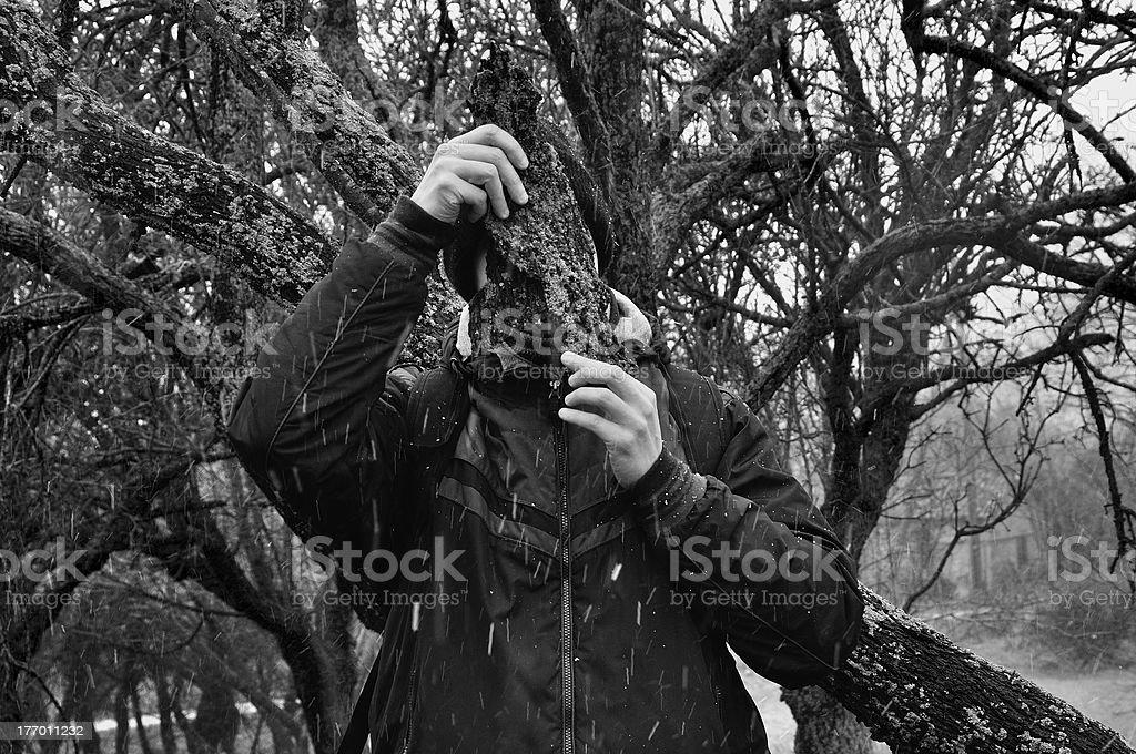 man with bark peel royalty-free stock photo
