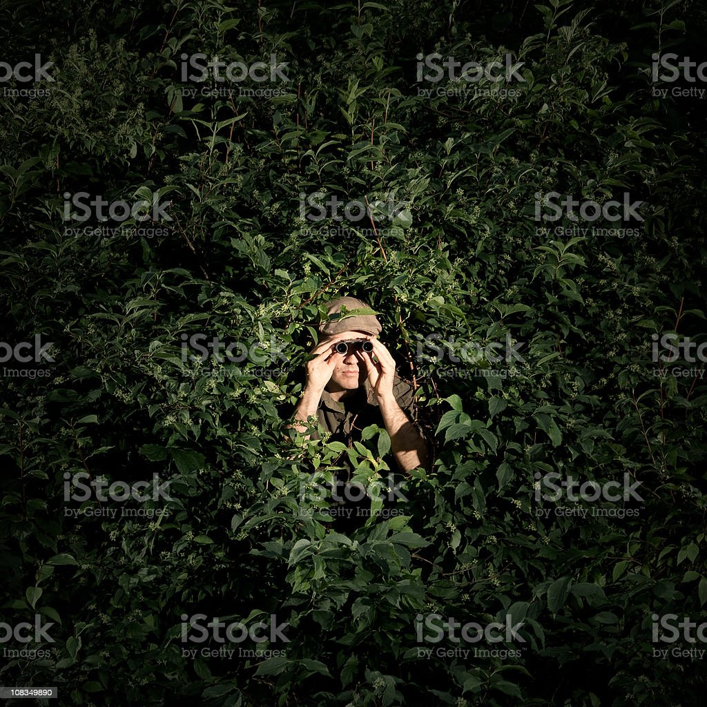 Man with binoculars hidden in bush stock photo