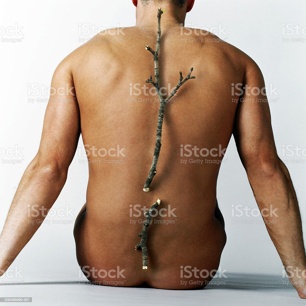 Man with broken twig placed over line of backbone, rear view royalty-free stock photo