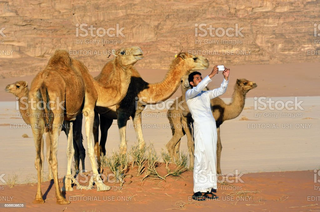 Man with camels in Wadi Rum desert stock photo