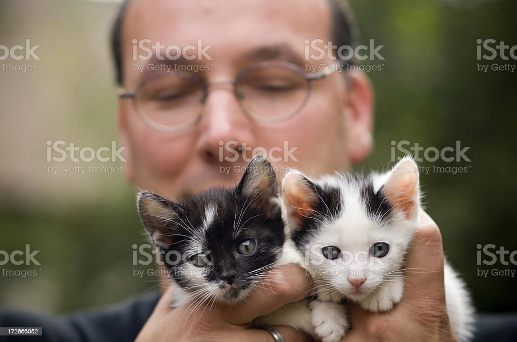 Man with cats royalty-free stock photo