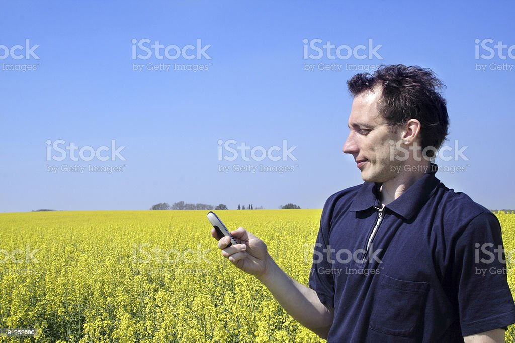 Man with cellphone in oilseed field stock photo