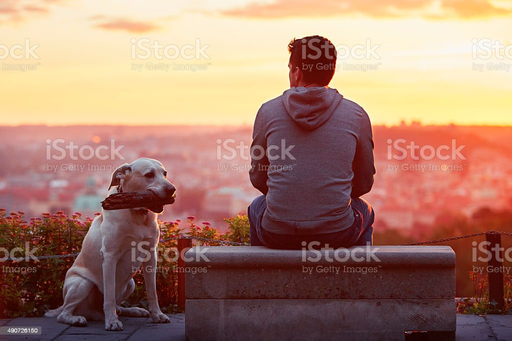 Man with dog at the sunrise stock photo