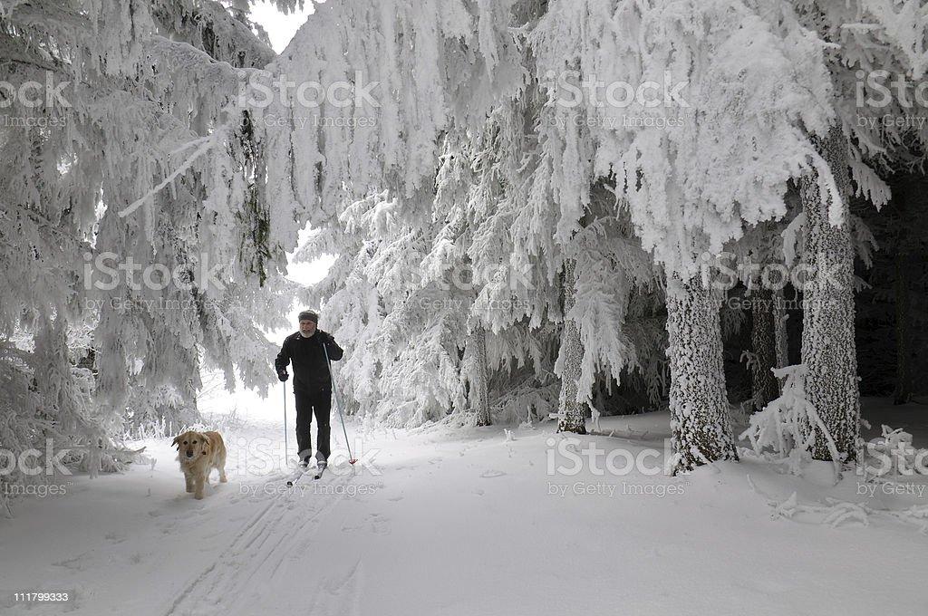 Man with dog in the ski paradise of Austria stock photo