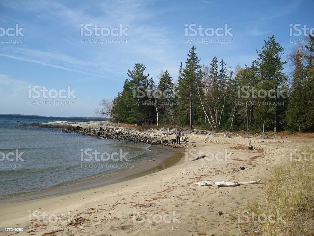 Man with dog on shore royalty-free stock photo