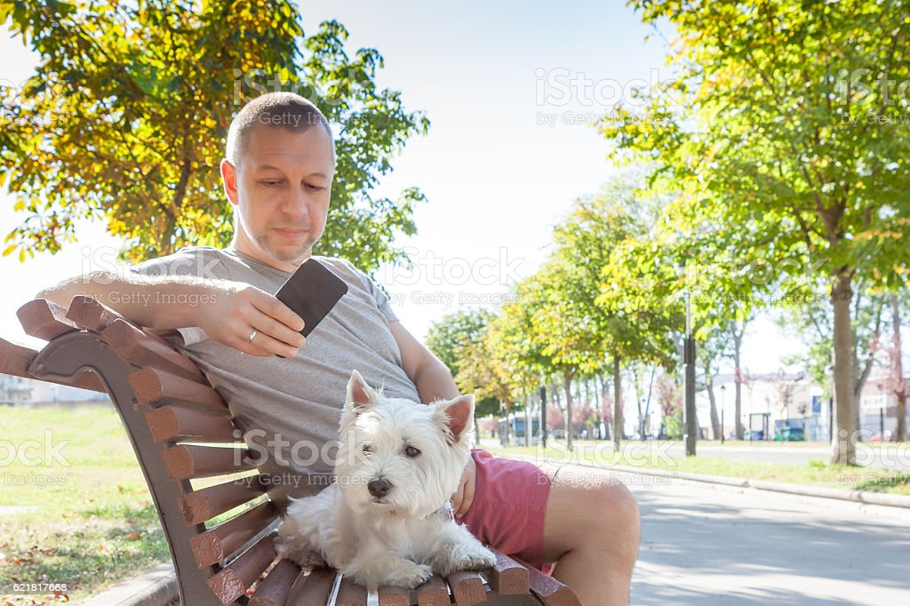 Man with dog on the bench stock photo