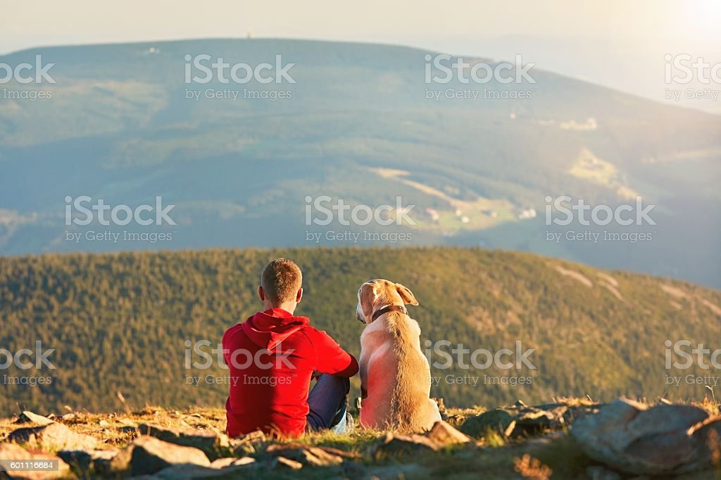 Man with dog on the trip in the mountains stock photo