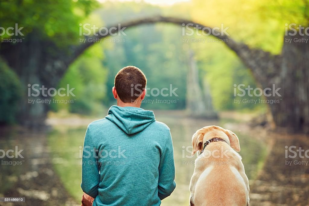 Man with dog stock photo