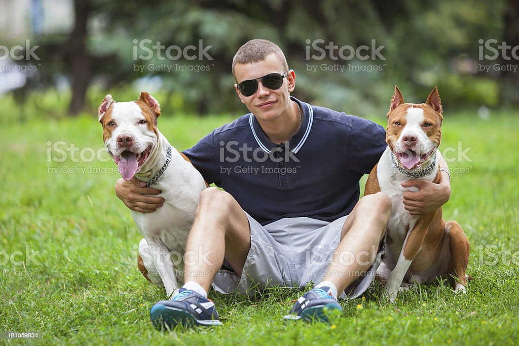 Man with dogs royalty-free stock photo