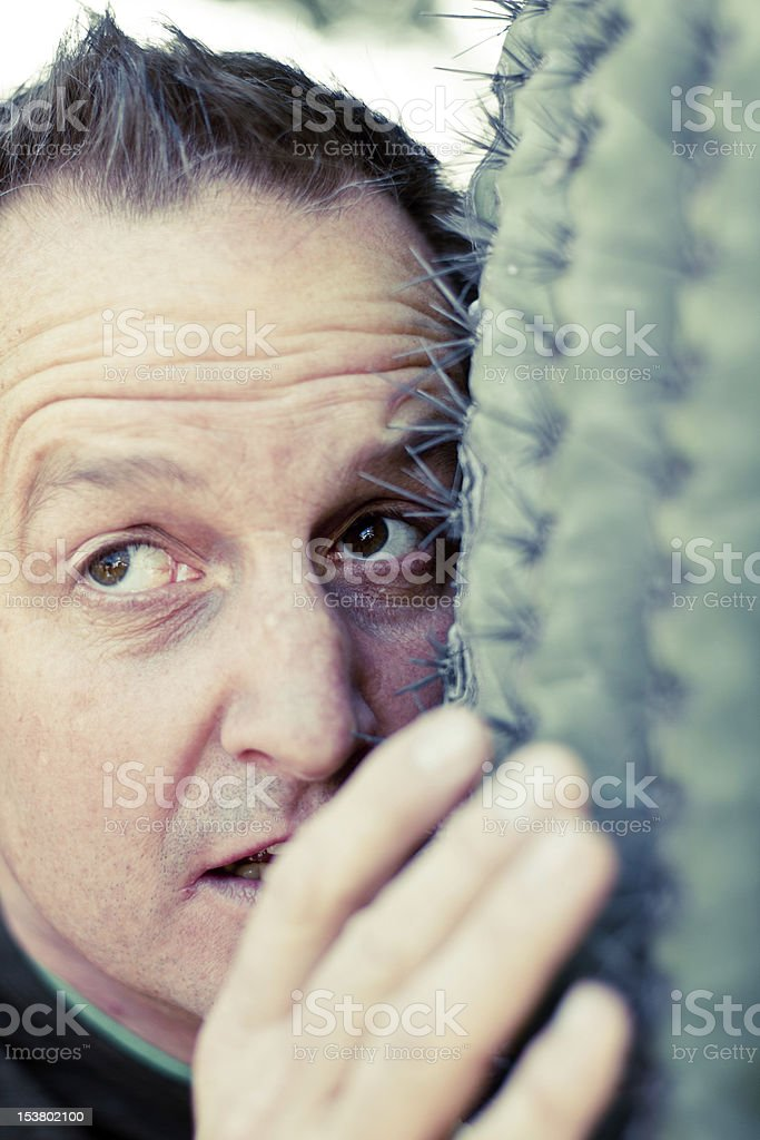 Man with Face in Cactus stock photo