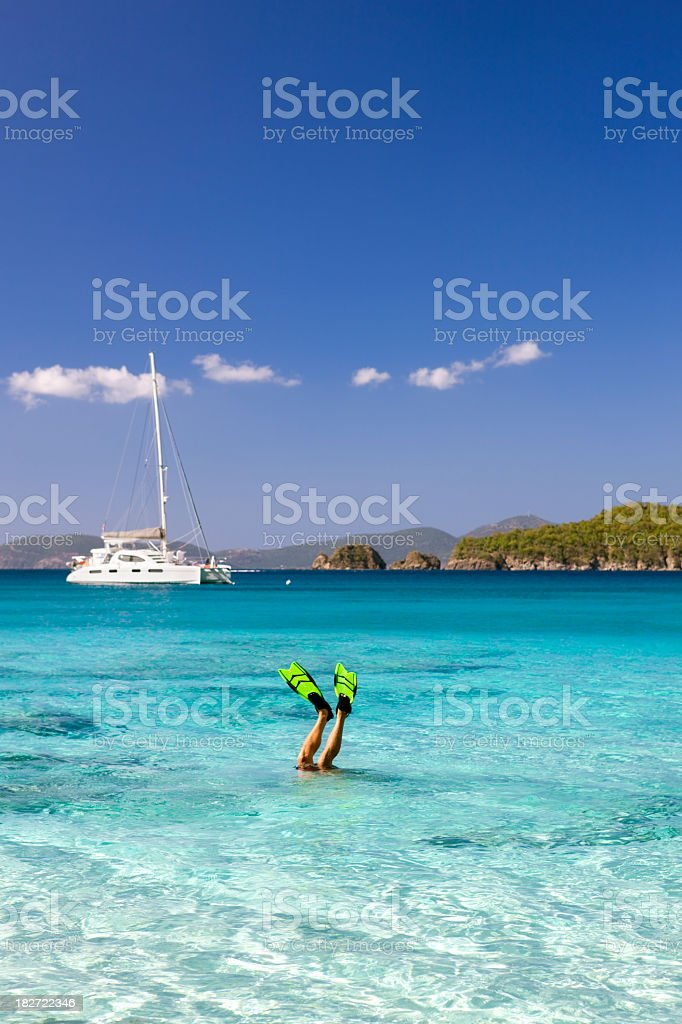 man with fins sticking up out of the Caribbean water stock photo