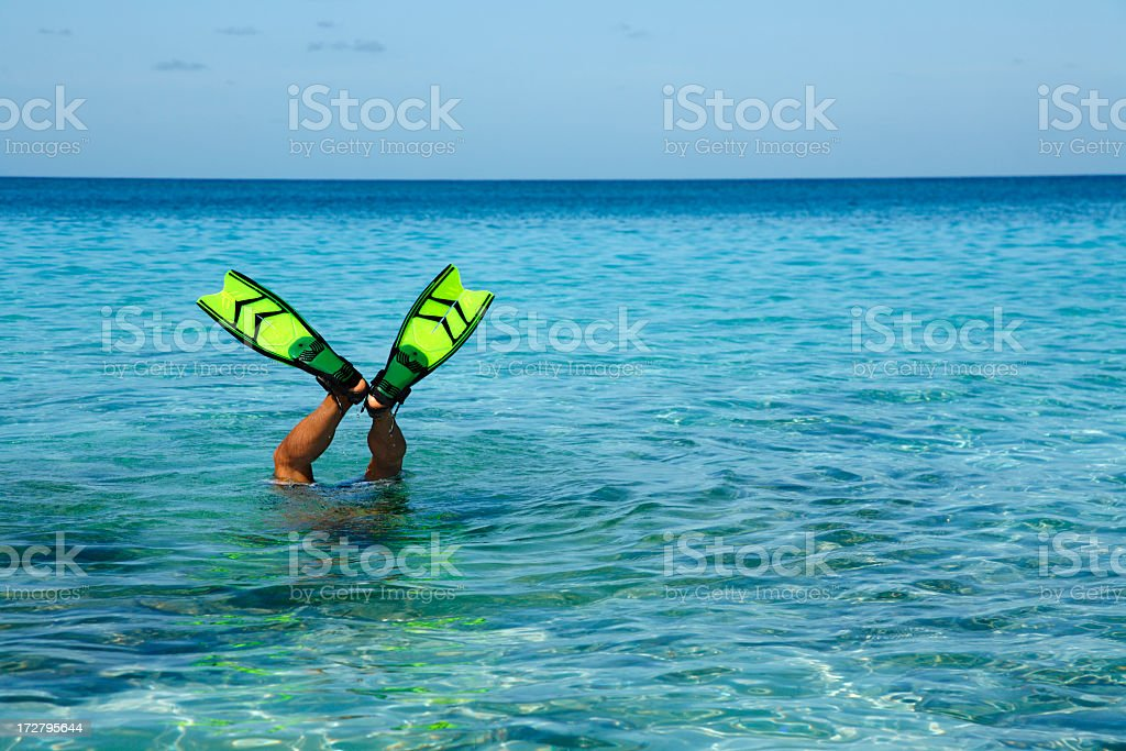 man with fins sticking up out of the water stock photo