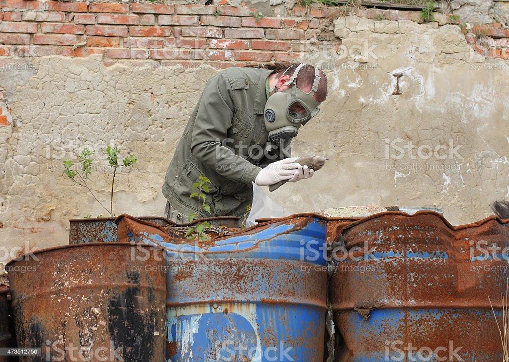 Man with gas mask  explores  dead bird stock photo