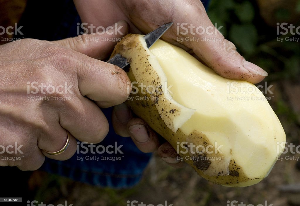 Man with gold ring peeling a large potato with a knife stock photo