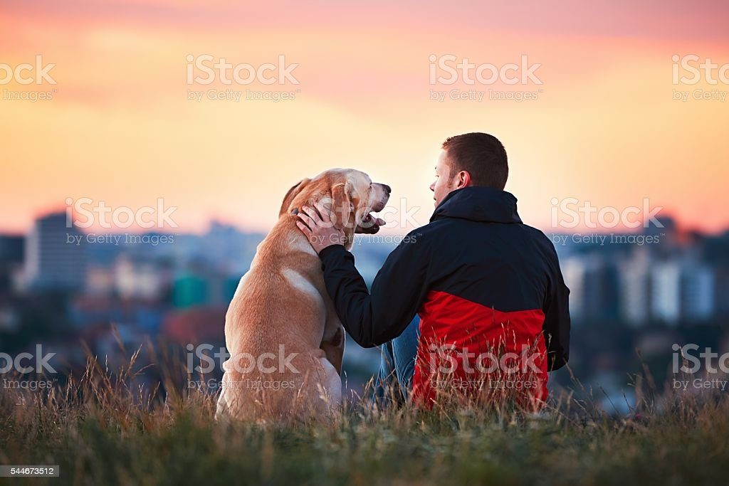 Man with his dog stock photo