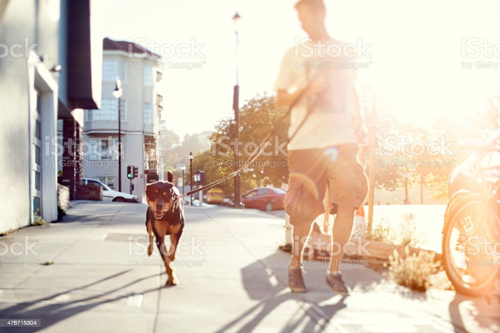 Man with his dog running outdoors stock photo