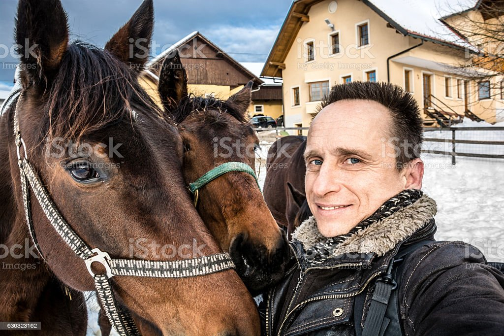 Man with horses stock photo