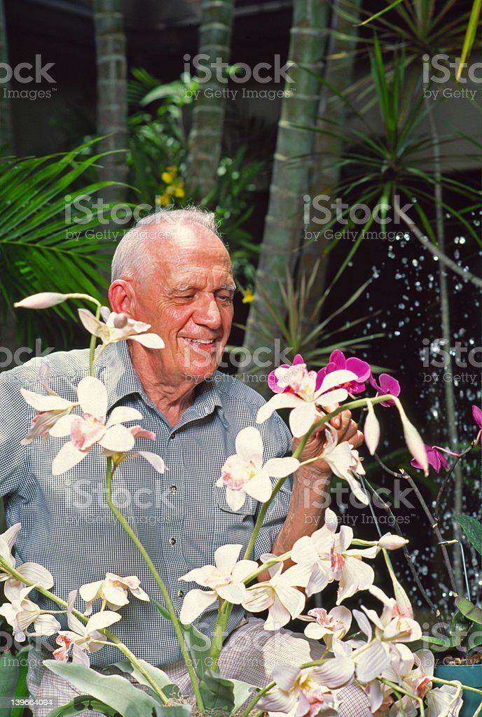 Man with orchids royalty-free stock photo