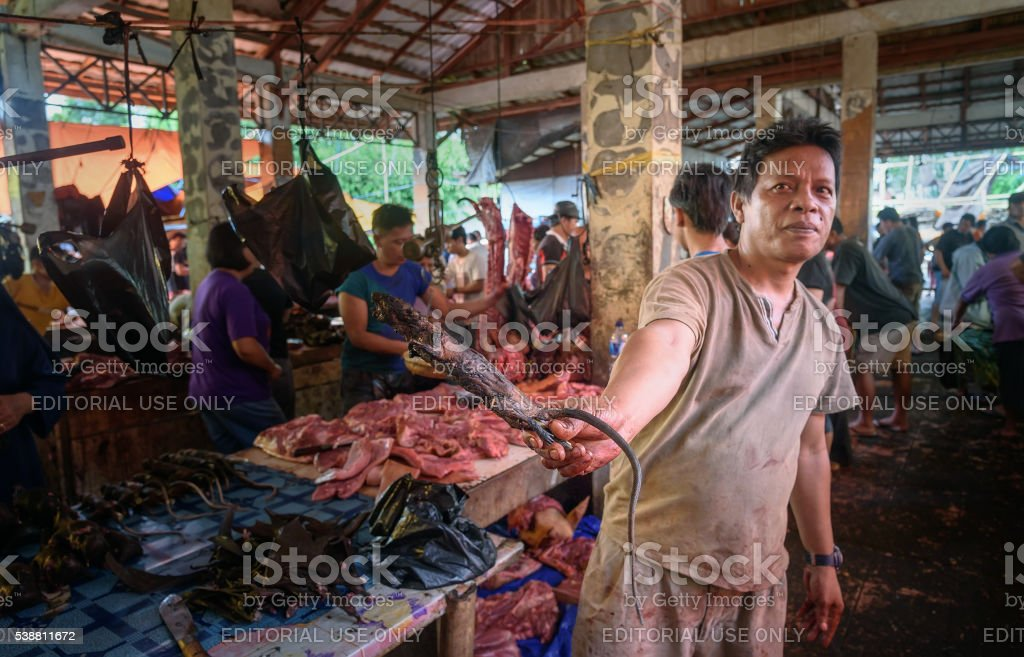 Man with rat on Tomohon Traditional Market stock photo
