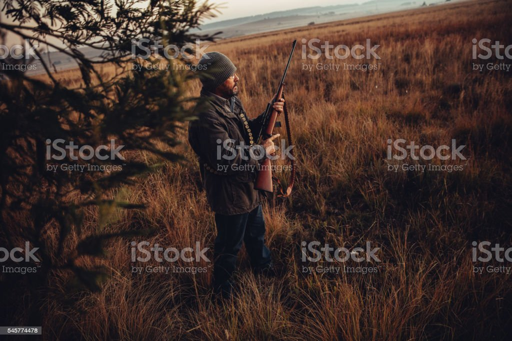Man with rifle and cartridge observing wild animals stock photo