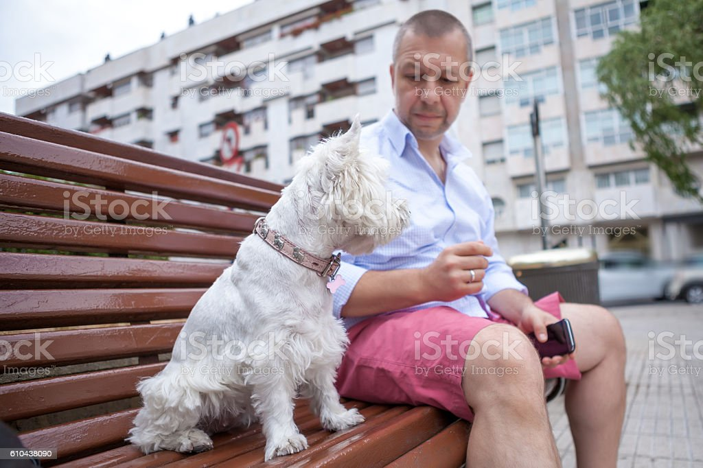 Man with the dog in the city stock photo