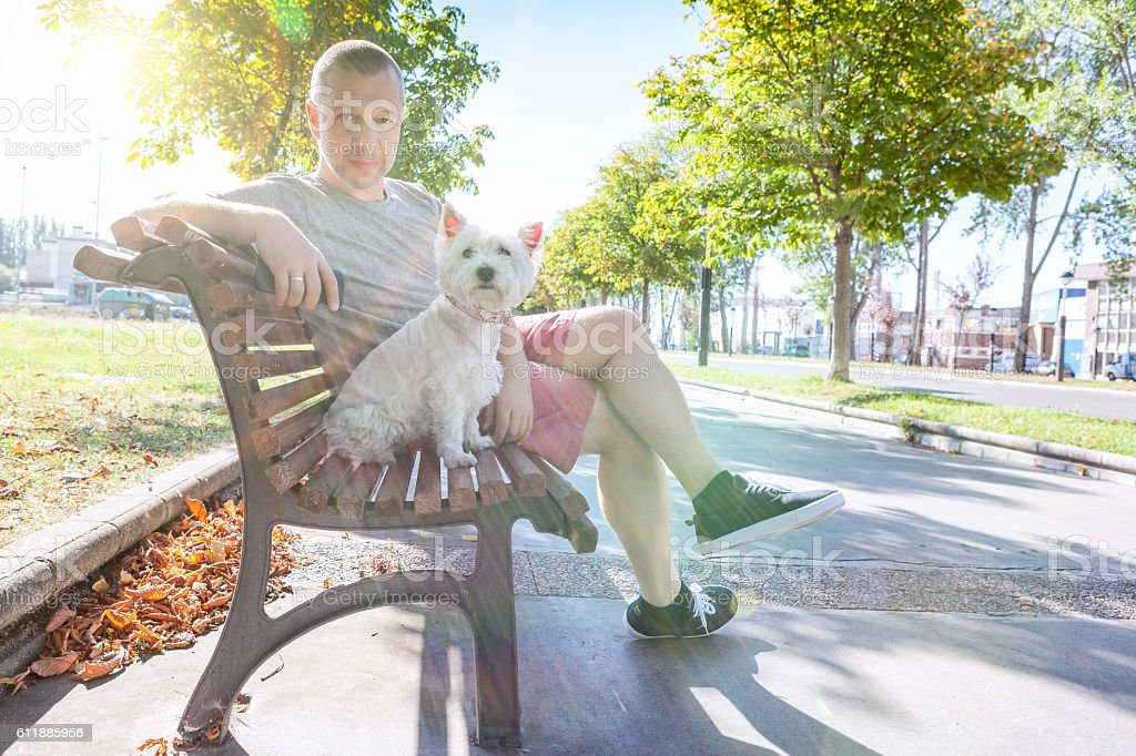 Man with the dog on the bench stock photo