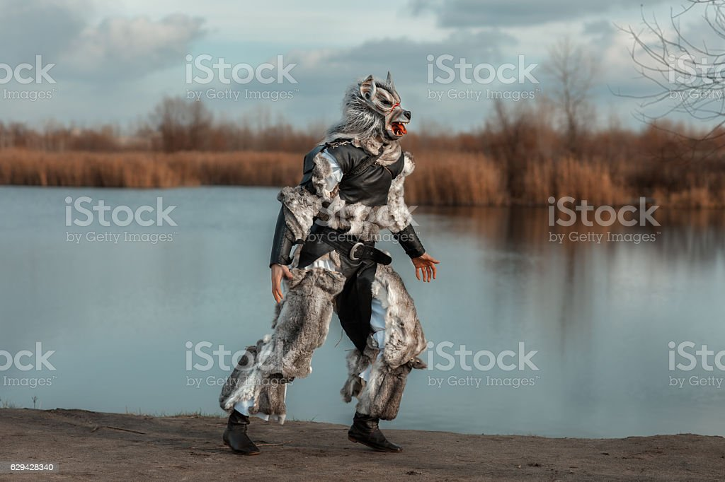 Man wolf werewolf runs. stock photo