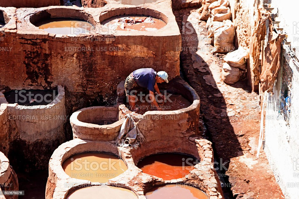Man working dying skins in a tannery in Fes Morocco stock photo