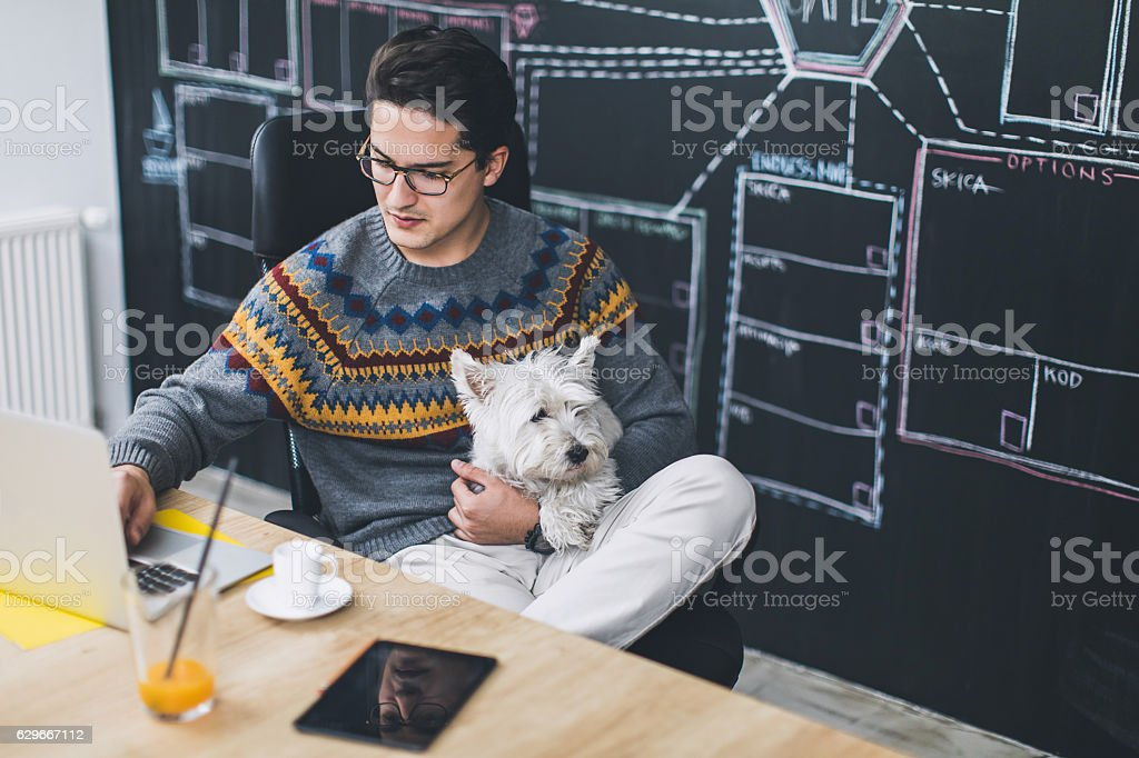 Man working in office and holding his cute dog stock photo