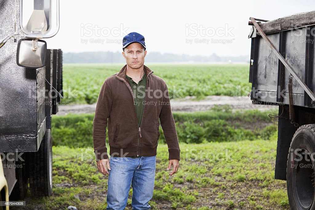 Man working on potato farm standing by trucks stock photo
