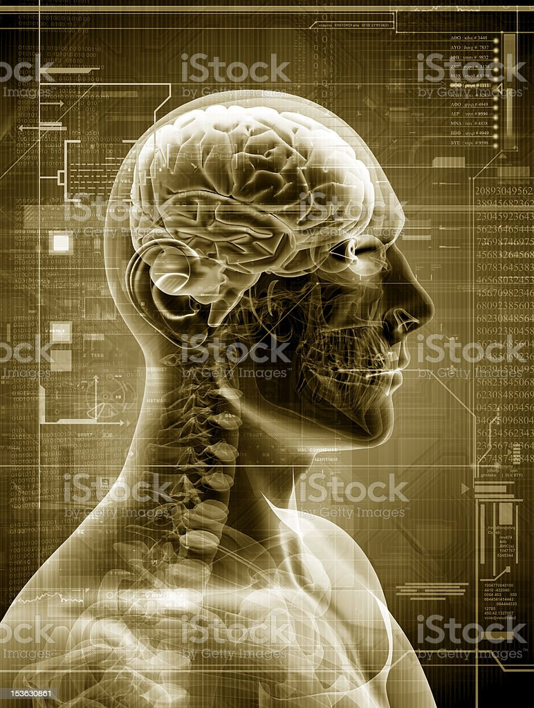 man x-ray stock photo