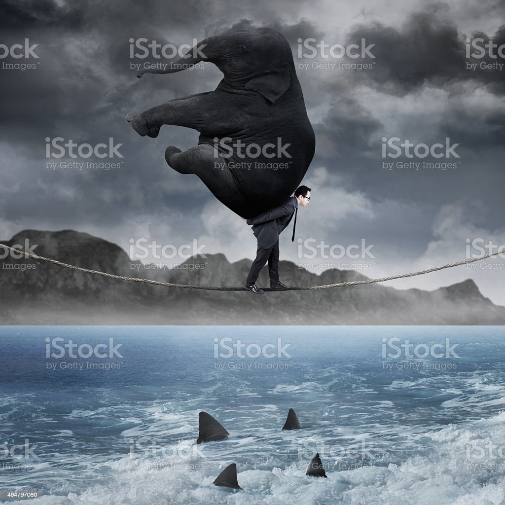 Manager carrying elephant above sea stock photo