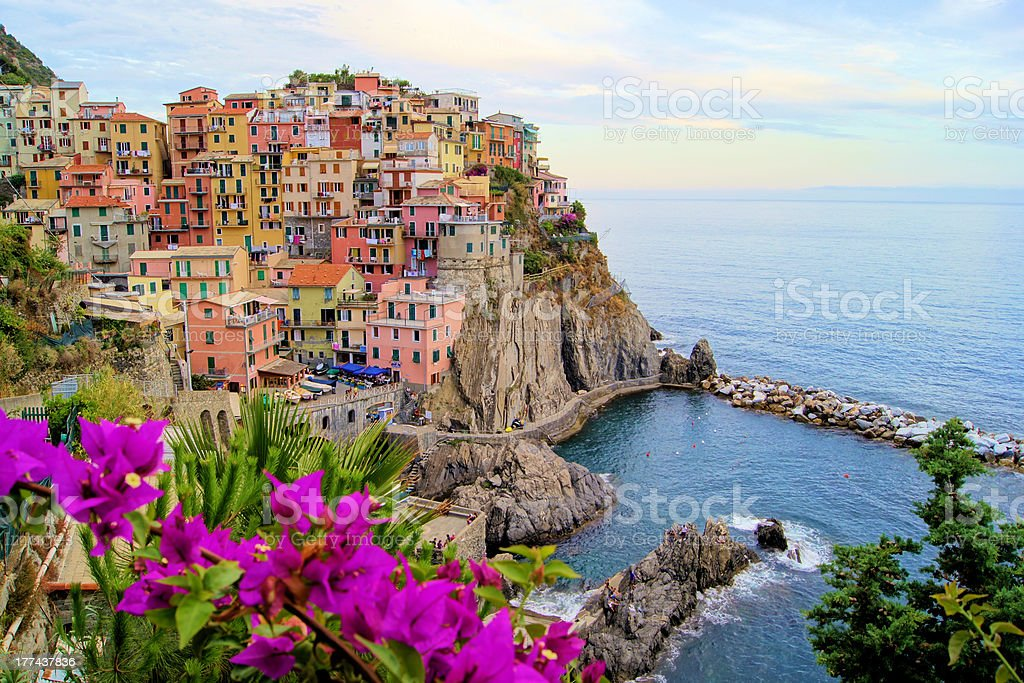 Manarola, Cinque Terre view with flowers, Italy stock photo