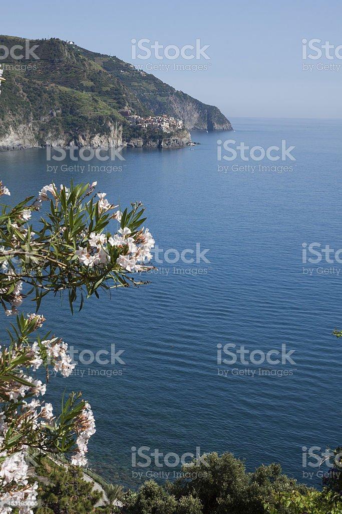 Manarola, Cinqueterre - Liguria Italy royalty-free stock photo