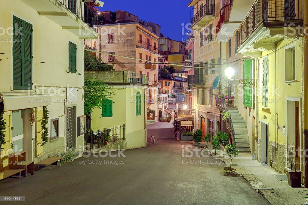 Manarola. Old street at night. stock photo