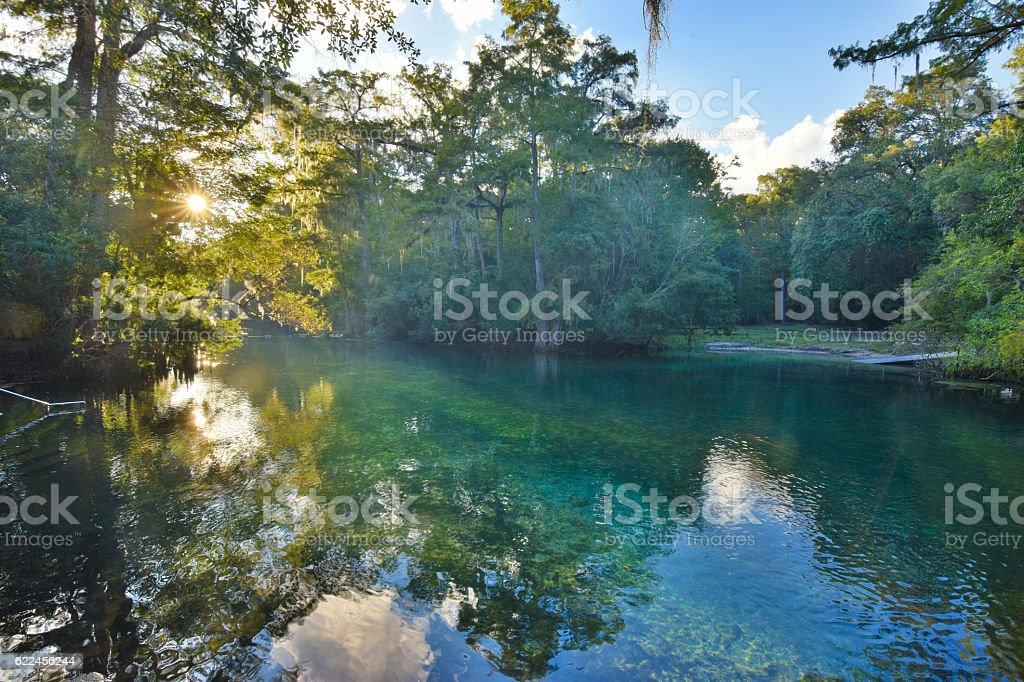Manatee Springs Florida stock photo
