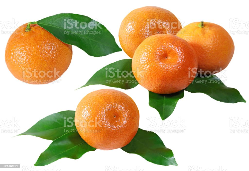 Mandarin Fruits Set stock photo
