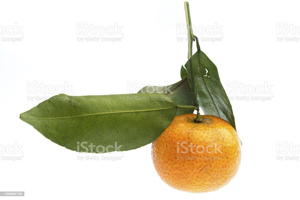mandarin orange fruit royalty-free stock photo