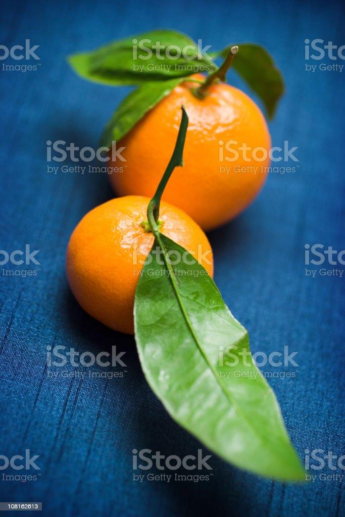Mandarin Oranges royalty-free stock photo