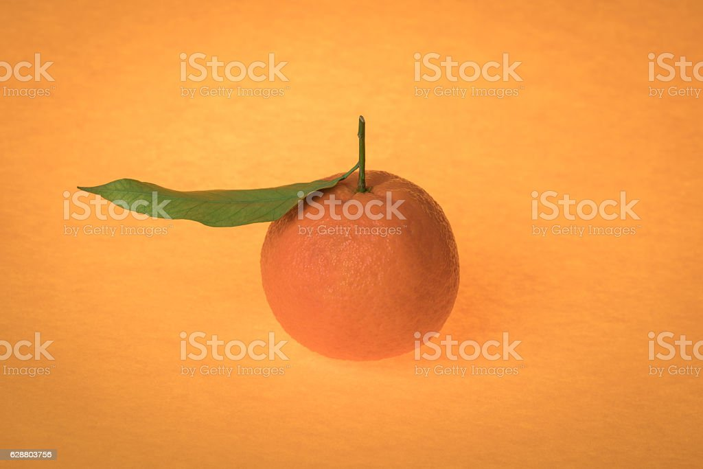 mandarin with Leafs stock photo
