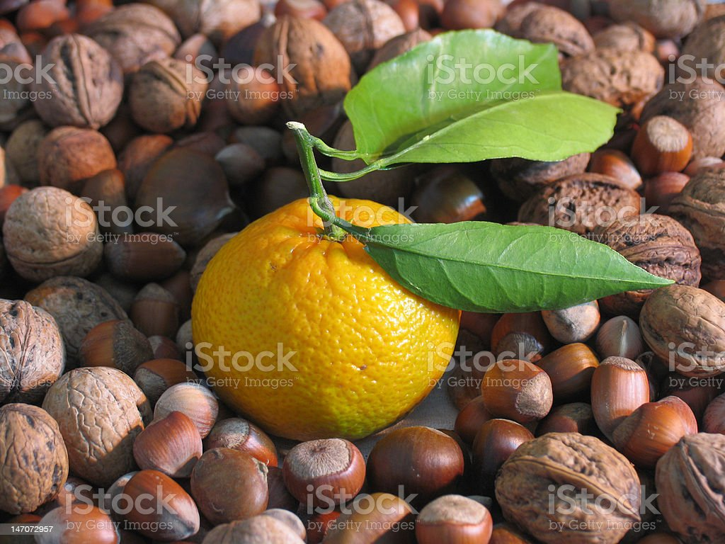 Mandarine nuts and hazelnuts stock photo