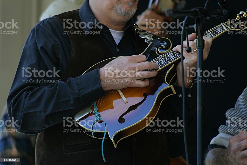 Mandolin Player stock photo