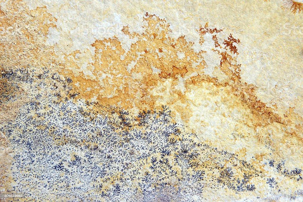 Manganese dendrites on limestone stock photo