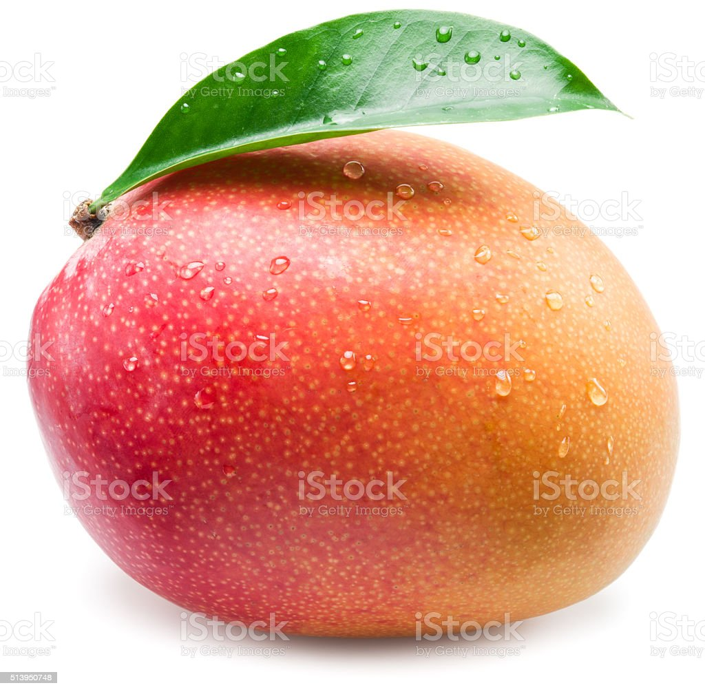 Mango fruit with water drops. stock photo