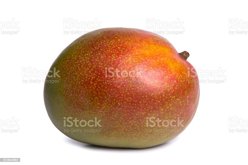 Mango on white background stock photo